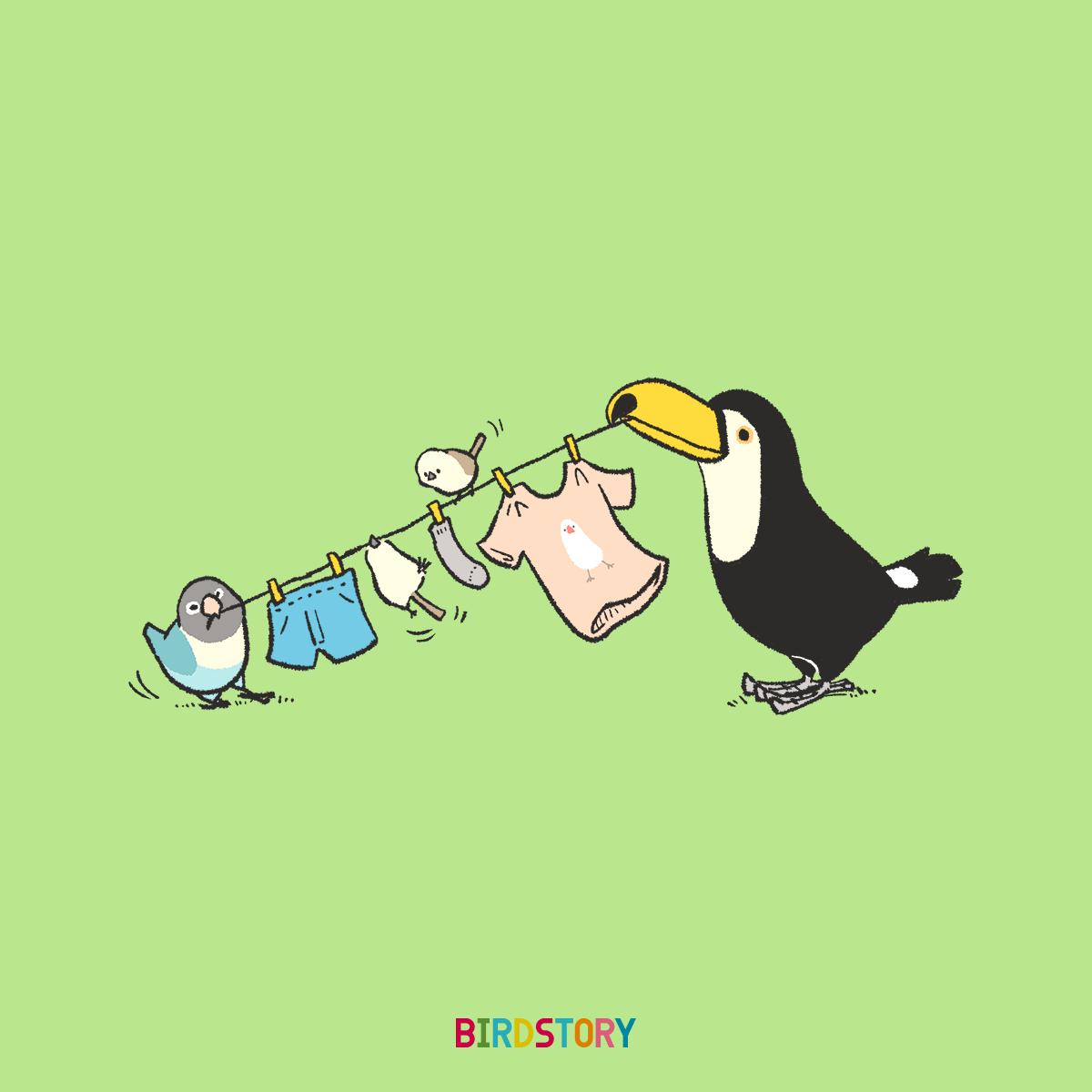梅雨の洗濯の選択 オニオオハシとボタンインコとシマエナガ