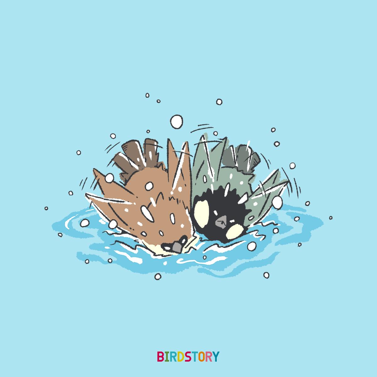 露天風呂の日 スズメとシジュウカラのイラスト