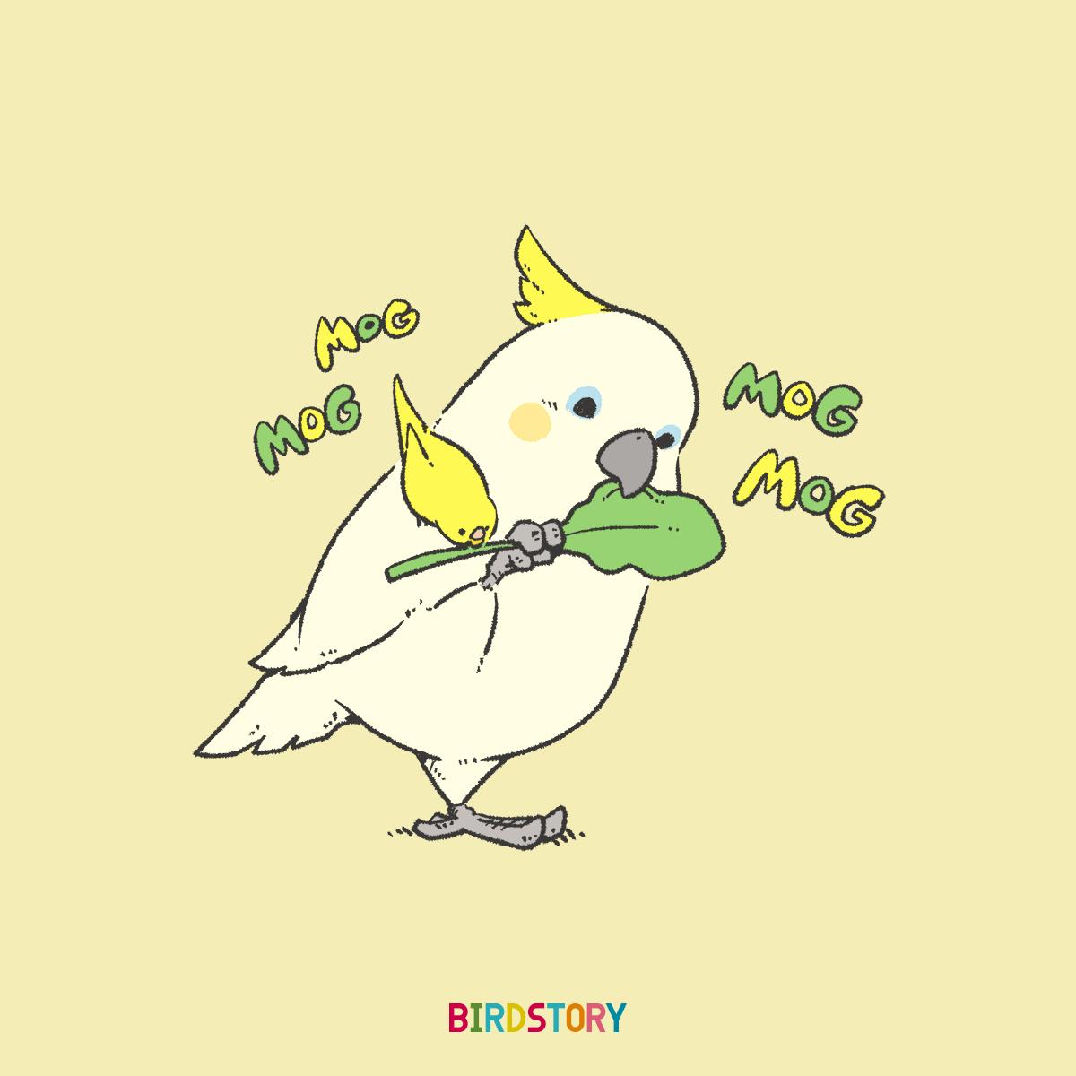 サラダ記念日 キバタンコバタン 小松菜イラスト