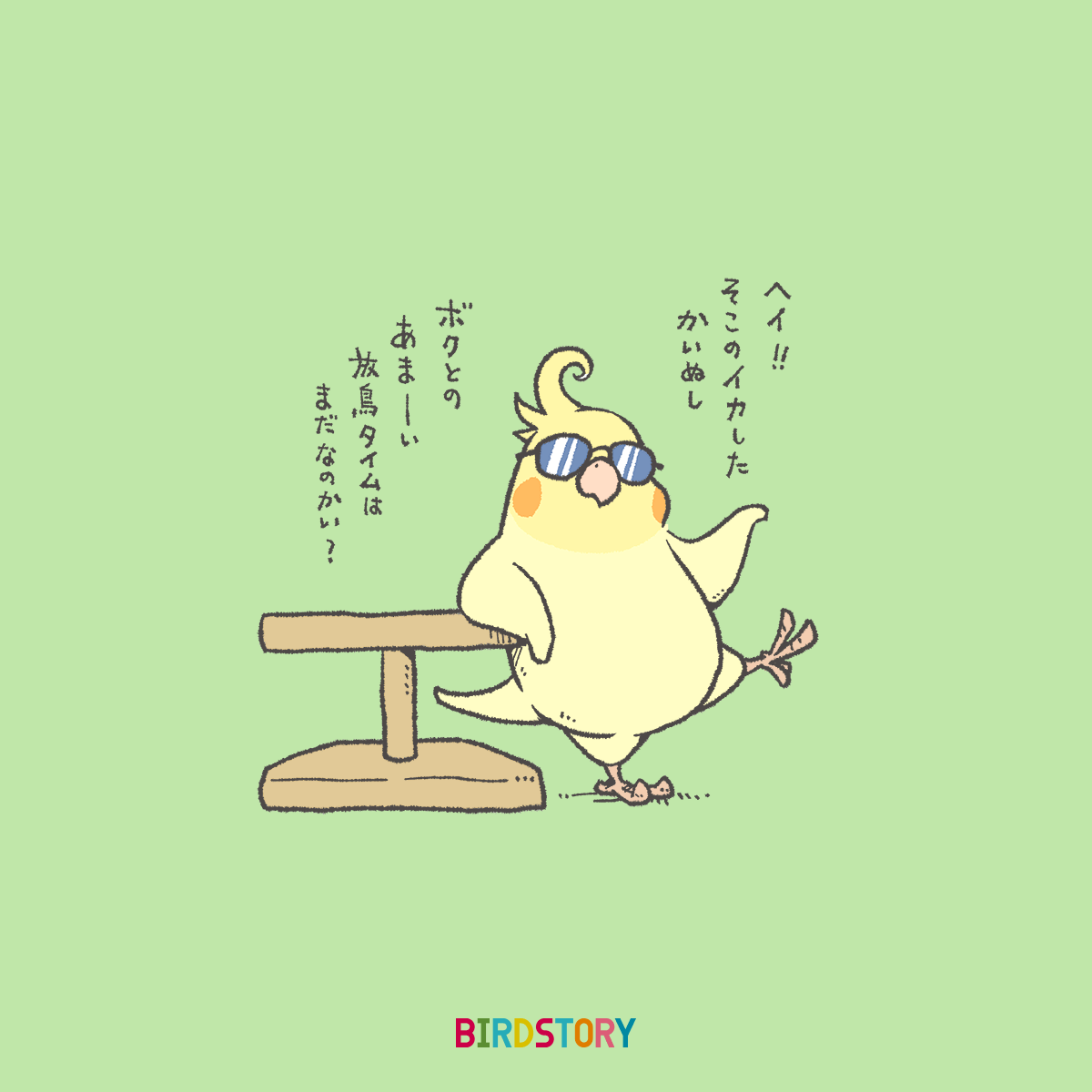 ナンパの日 オカメインコイラスト