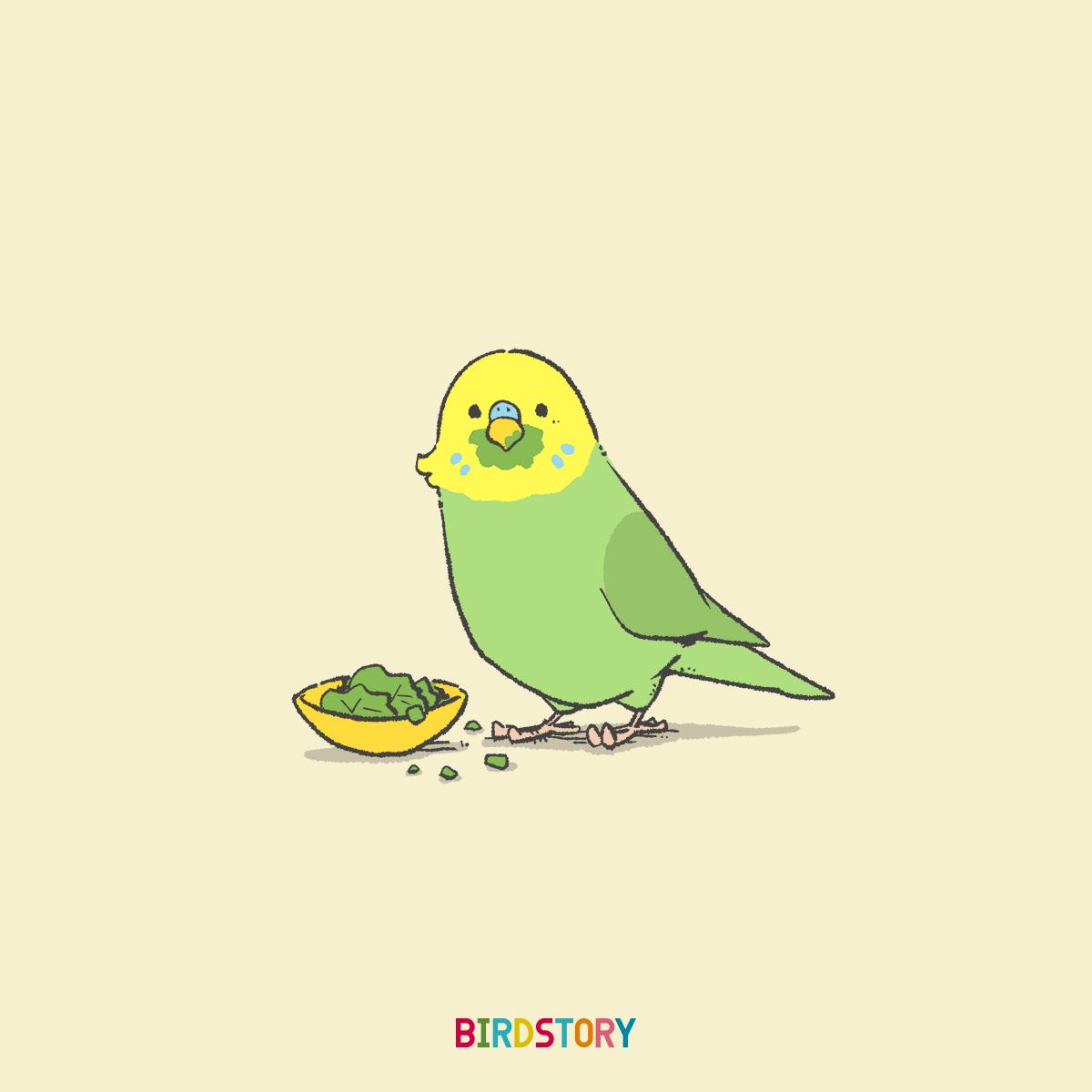 菜っ葉の日セキセイインコ