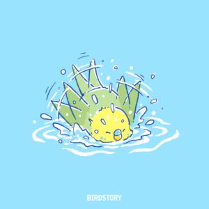 水の日 セキセイインコの水浴び