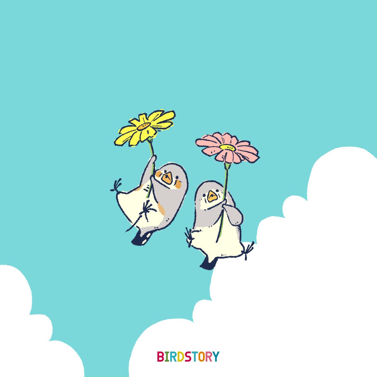 花の日 キンカチョウふわふわ