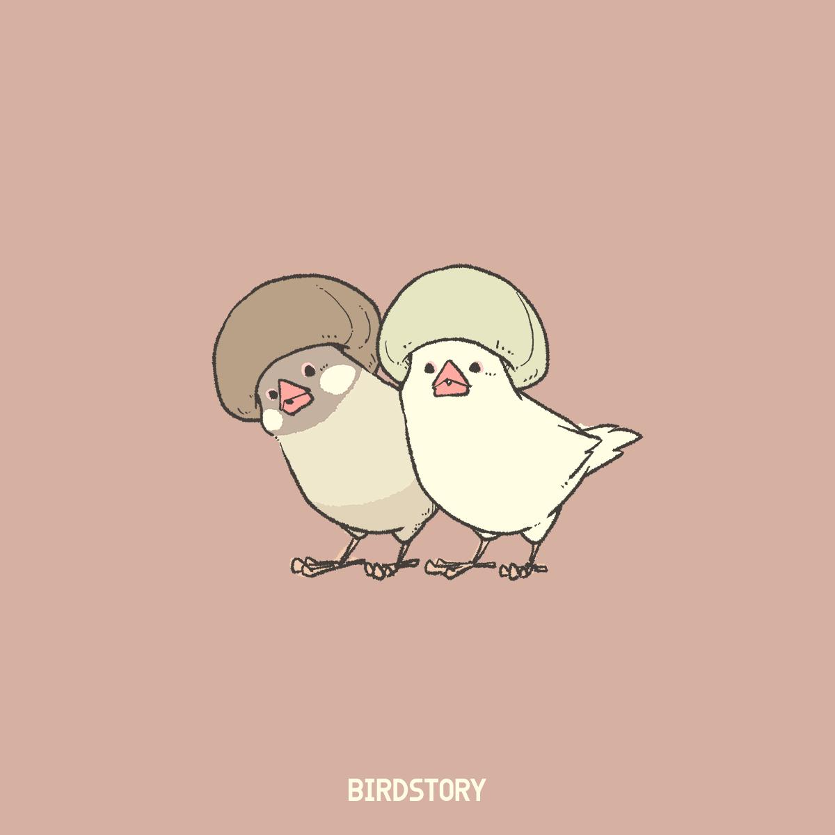マッシュルームの日 ヘアスタイル文鳥