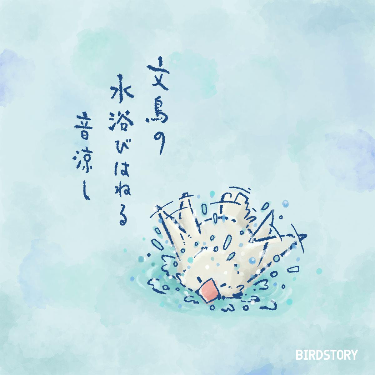 俳句の日 ブンチョウの水浴び