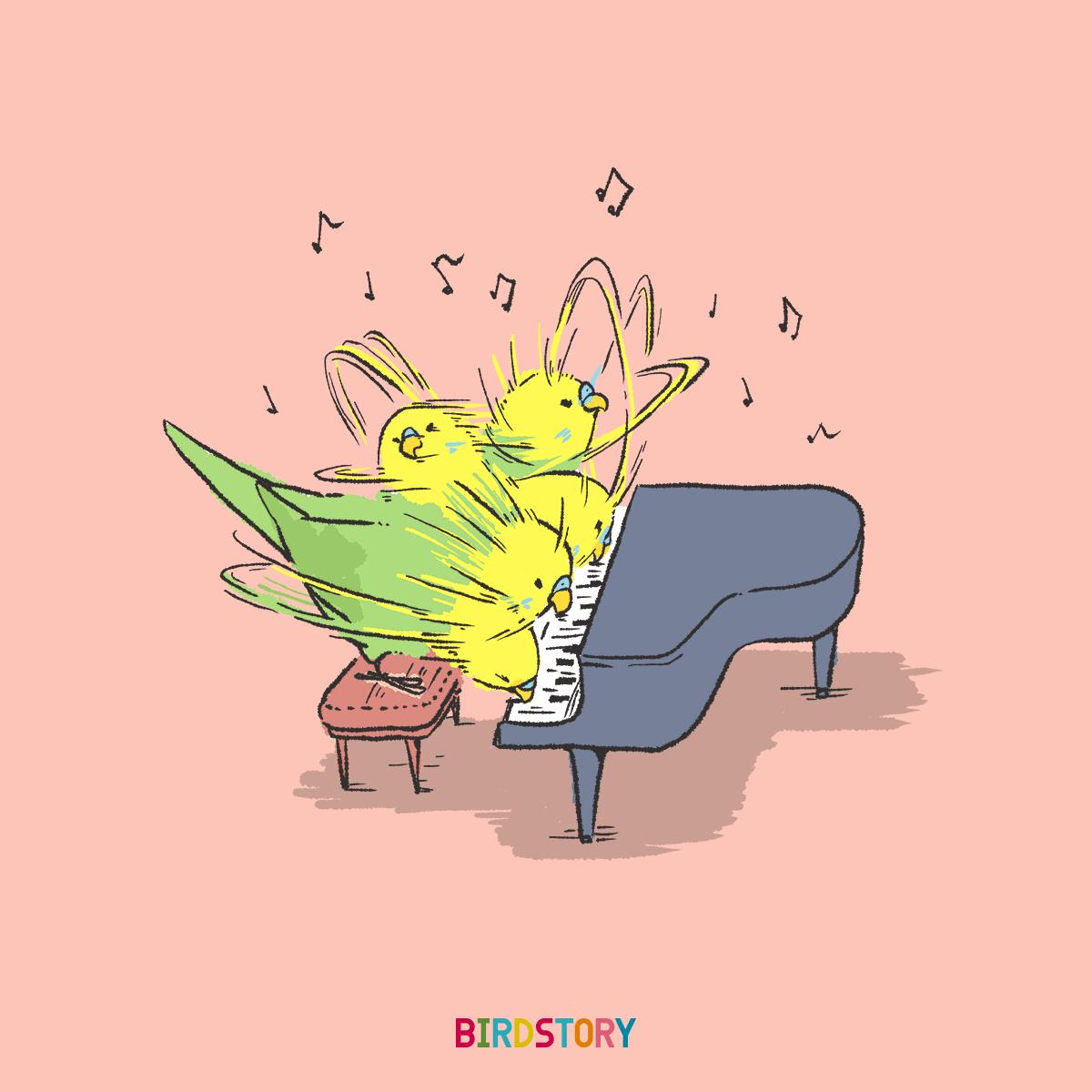 クラシック音楽の日 ピアニストセキセイインコ