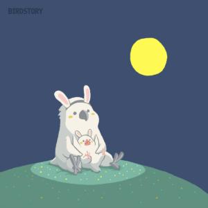 中秋の名月 十五夜満月タイハクオウム