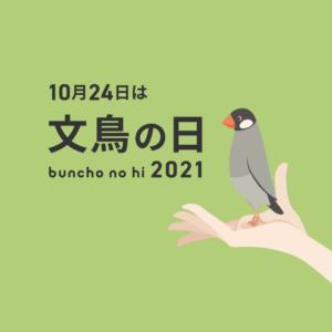 文鳥の日 2021年10月24日 手に幸せ